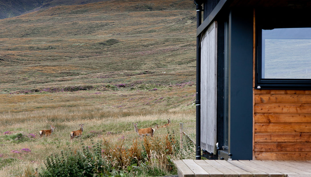 black-shed-skye-deer-macleods-tables